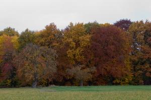 Couleurs d'automne@jlf
