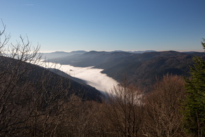 Mer de brume